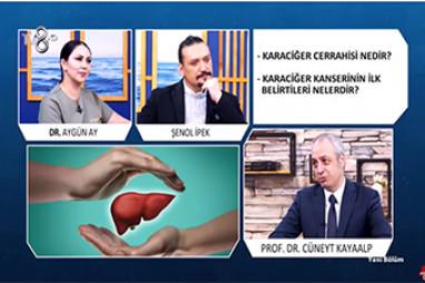 Karaciğer Kanseri ve Tedavisi | Prof. Dr. Cüneyt Kayaalp