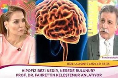 Hipofiz Hastalıkları | Prof. Dr. Fahrettin Keleştemur