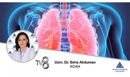 KOAH  | Dr. Öğr. Üyesi Seha Akduman
