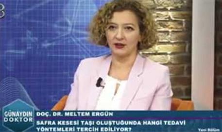 Safra Kesesi Taşları  |  Prof. Dr. Meltem Ergün