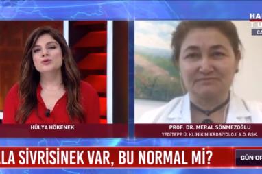 Batı Nil Virüsü | Prof. Dr. Meral Sönmezoğlu