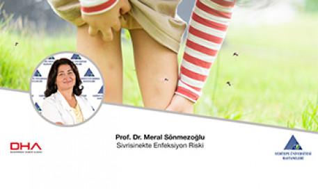 Sivrisinekte Enfeksiyon Riski | Prof. Dr. Meral Sönmezoğlu