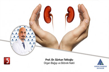 Organ Bağışı ve Böbrek Nakli