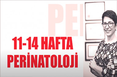 Perinatoloji Uzmanının Hamilelik Döneminde Önemi | Op. Dr. Petek Feriha Uzuner