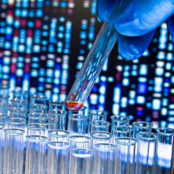 Yeditepe Üniversitesi Doku Tipleme Laboratuvarı