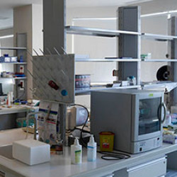 Yeditepe Üniversitesi Genetik Tanı Merkezi